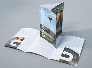 Premium Silk Folded Leaflet